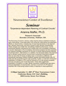 LSU Seminar Neuroscience Center of Excellence
