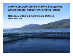 Marine Aquaculture and Marine Ecosystems: Environmental Impacts of Farming Finfish
