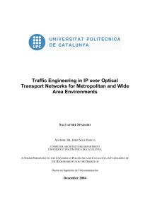 Traffic Engineering in IP over Optical Area Environments