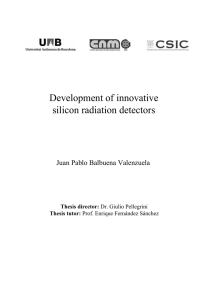 Development of innovative silicon radiation detectors Juan Pablo Balbuena Valenzuela Thesis director: