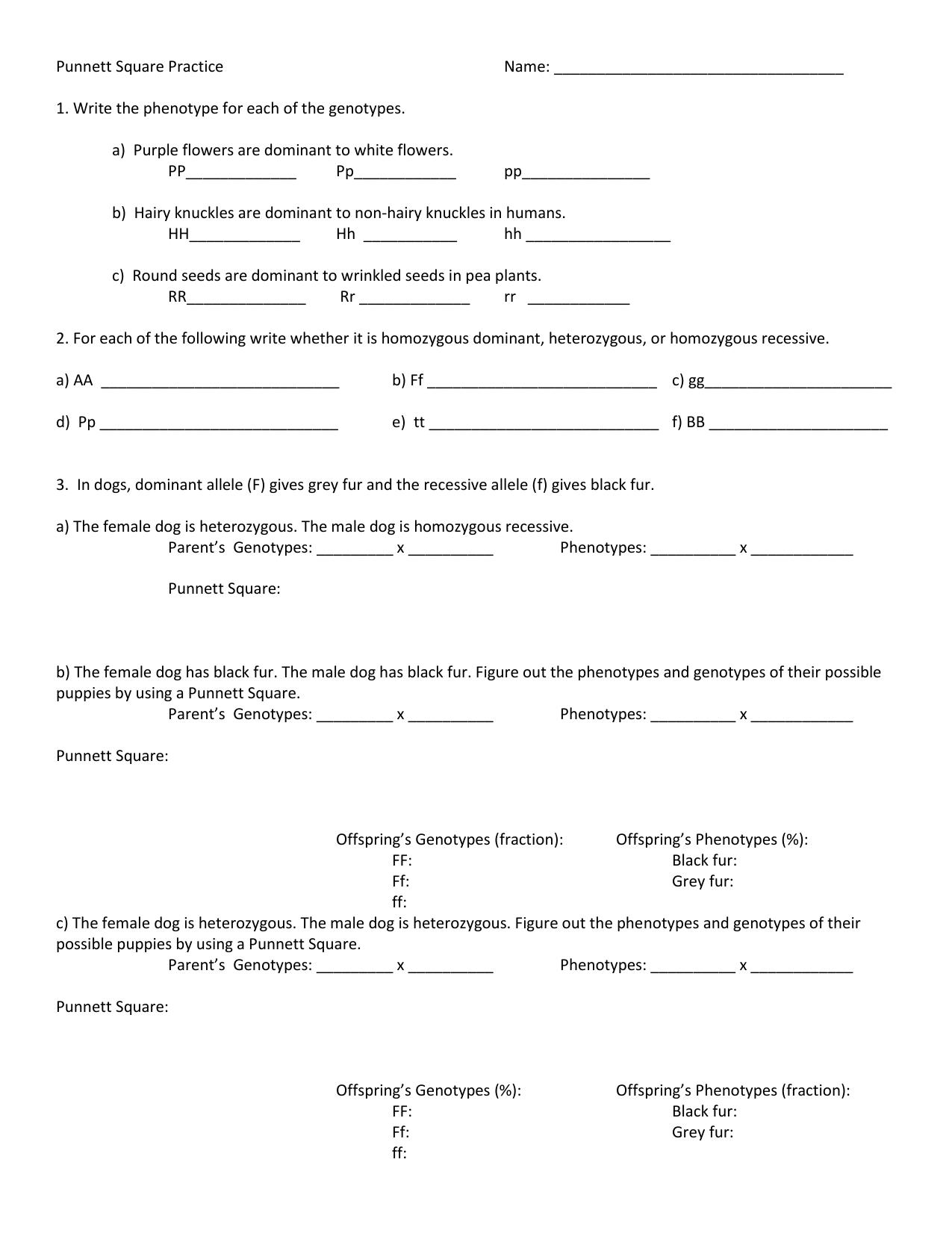 worksheet Punnett Square Practice Worksheet Answers punnett square practice worksheet