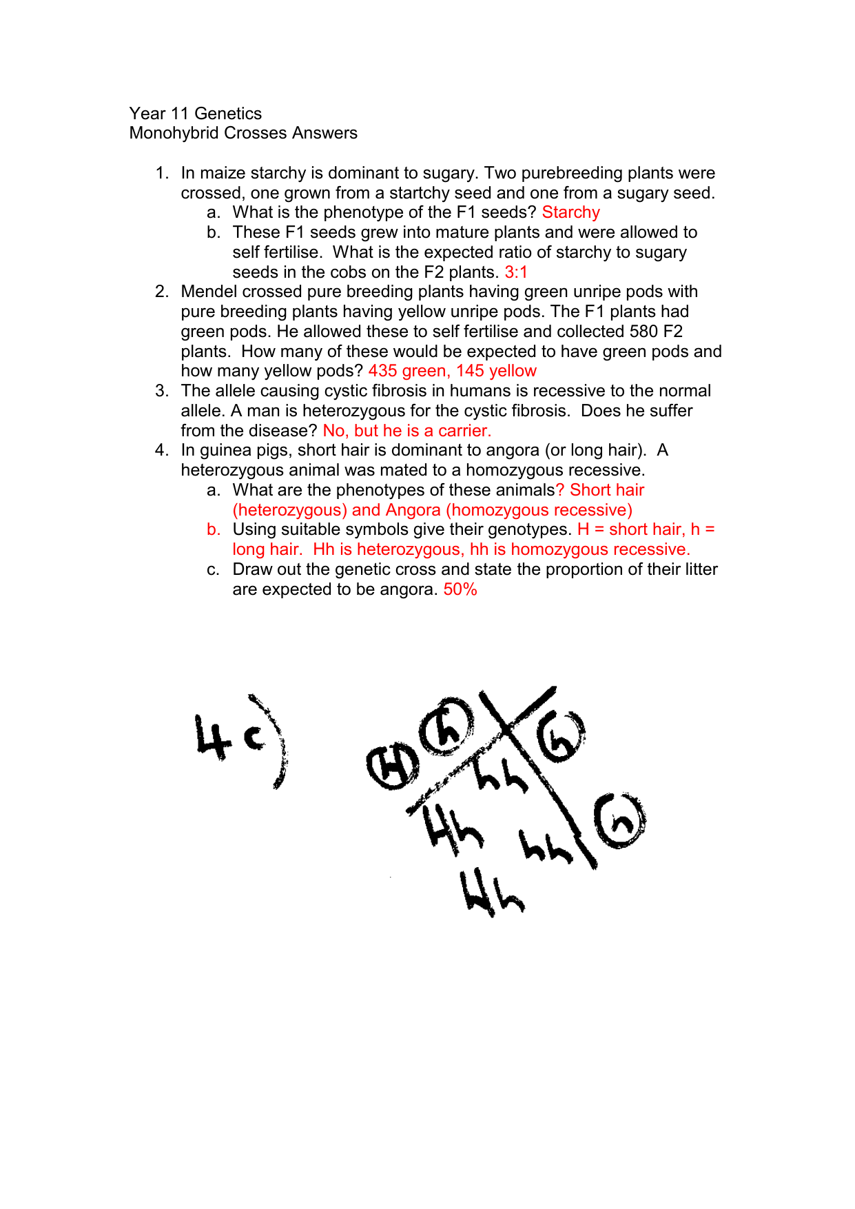 Monohybrid Crosses Practice Worksheet Answer Key ...