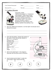 Microscope and Cells