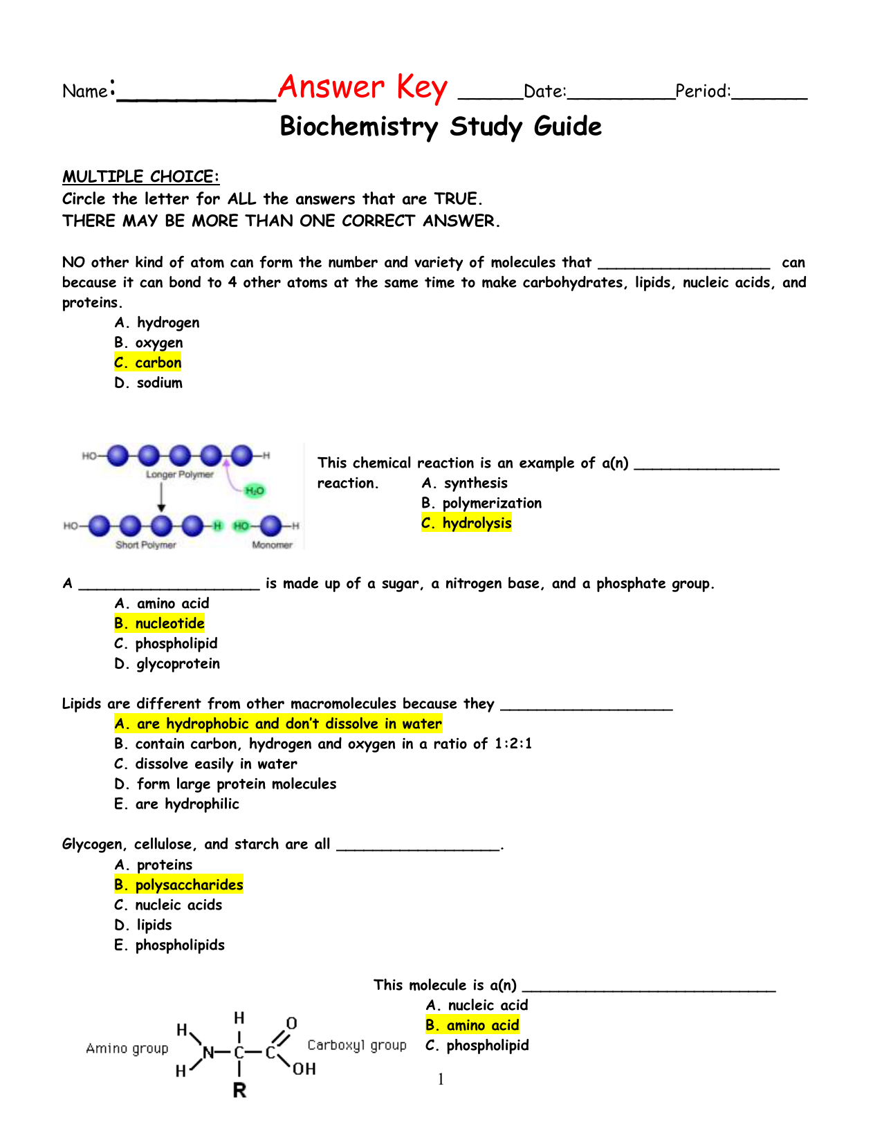 Answer Key for Biochemistry Study Guide