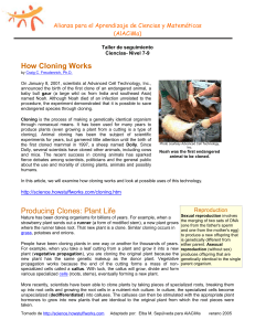 understanding how cloning world and its benefits Benefits of cloning essay - cloning is the process of making a genetically identical organism through the use of a dna sample after the first cloned sheep dolly was created, many people were keen in knowing more about cloning and its benefit to society.