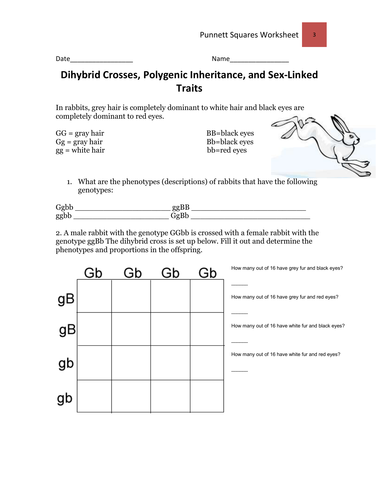How To Do A Dihybrid Cross Worksheet