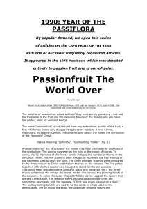 1990: YEAR OF THE PASSIFLORA
