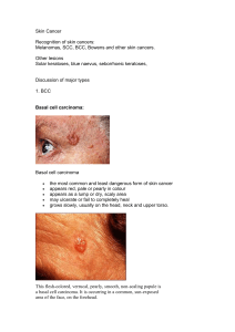 Tutorial Skin Cancer