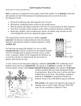 Soil Formation Worksheet