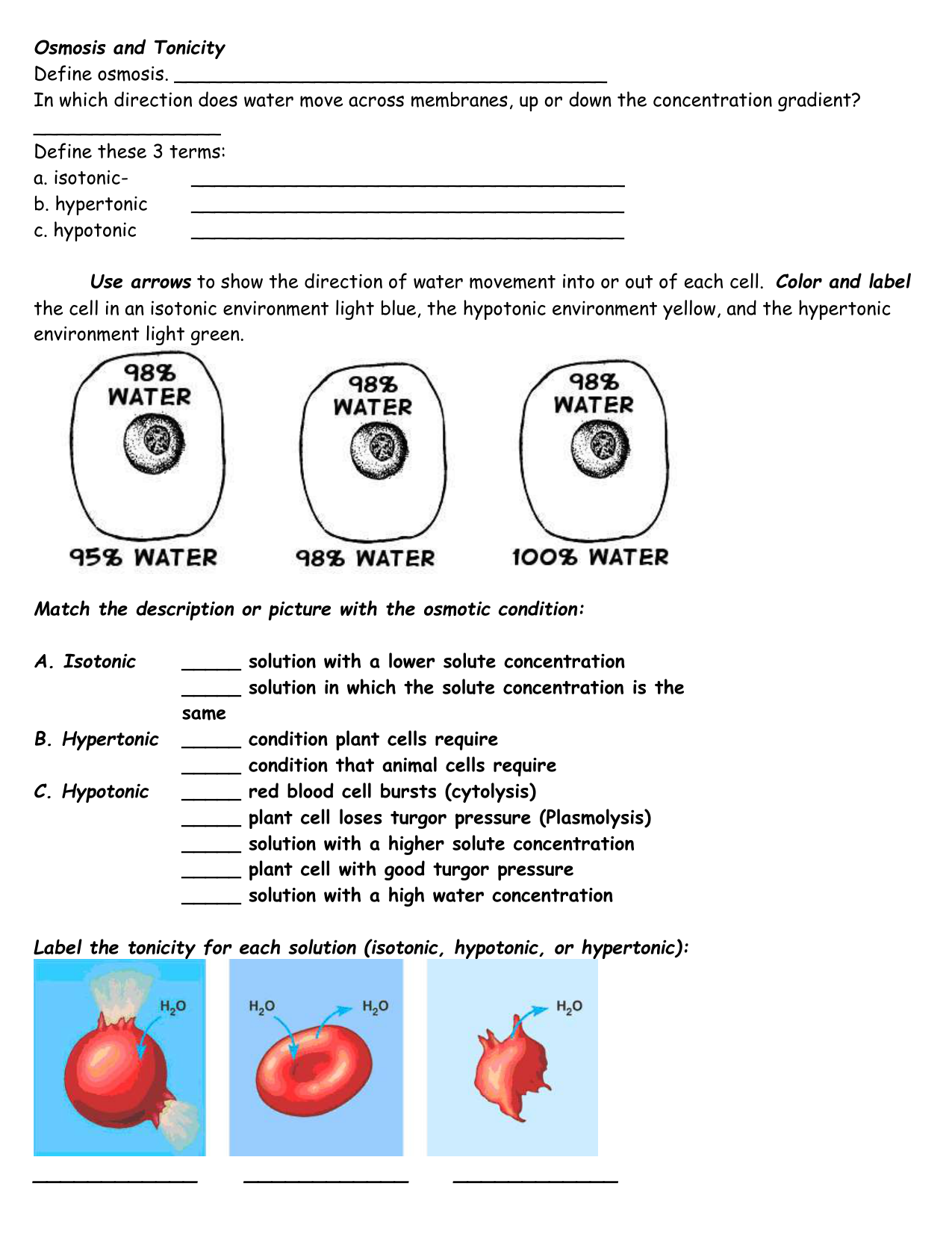 Osmosis and Tonicity Define osmosis. In which direction does water In Osmosis And Tonicity Worksheet