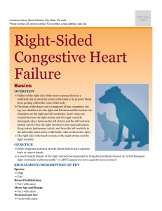 right-sided_congestive_heart_failure