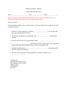 Student worksheet for Proteins