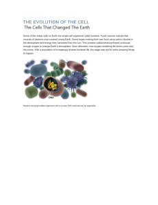the evolution of the cell