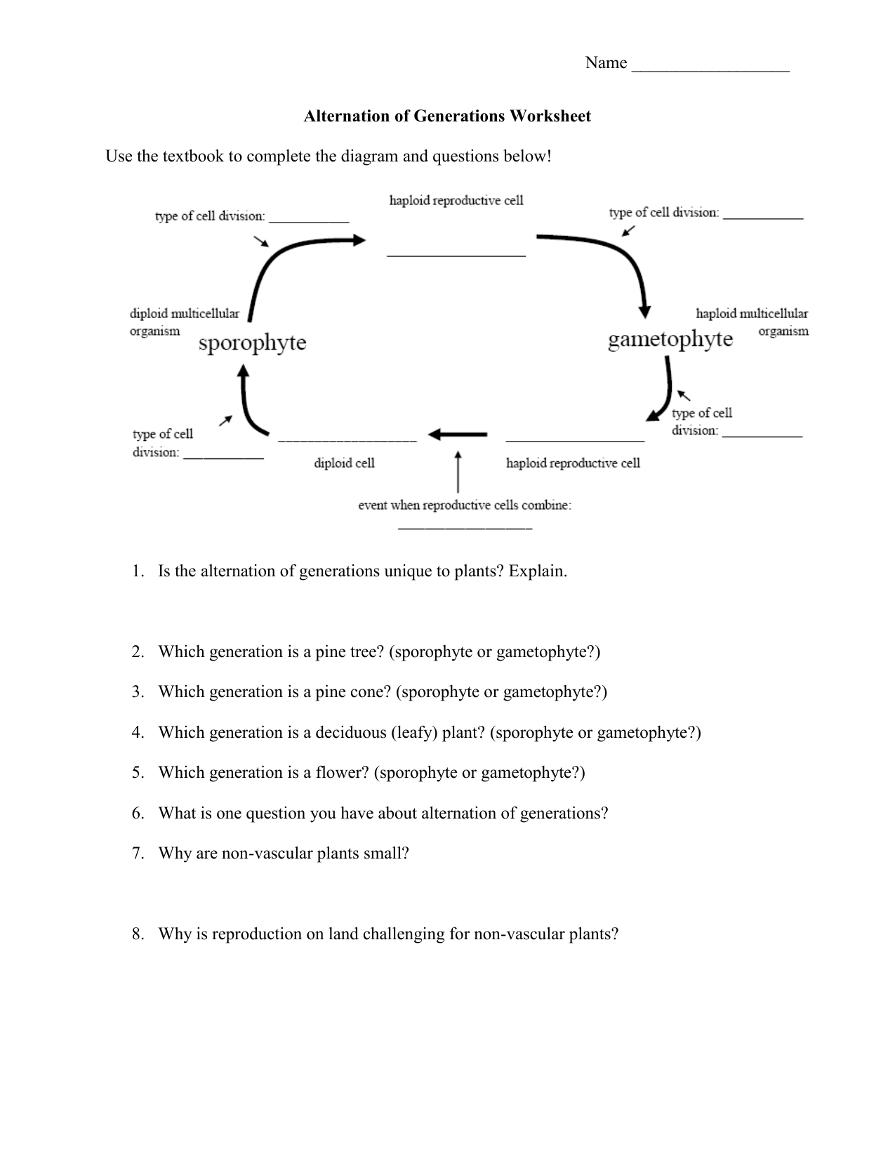 0099538641825579ba740b2bea692050bf7cb765d6png – Vascular and Nonvascular Plants Worksheet