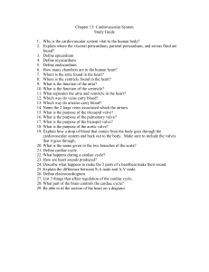 study guide 13