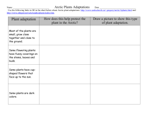 Link for arctic plants