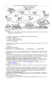 Activity Sheet on Food Chain, Food Web and