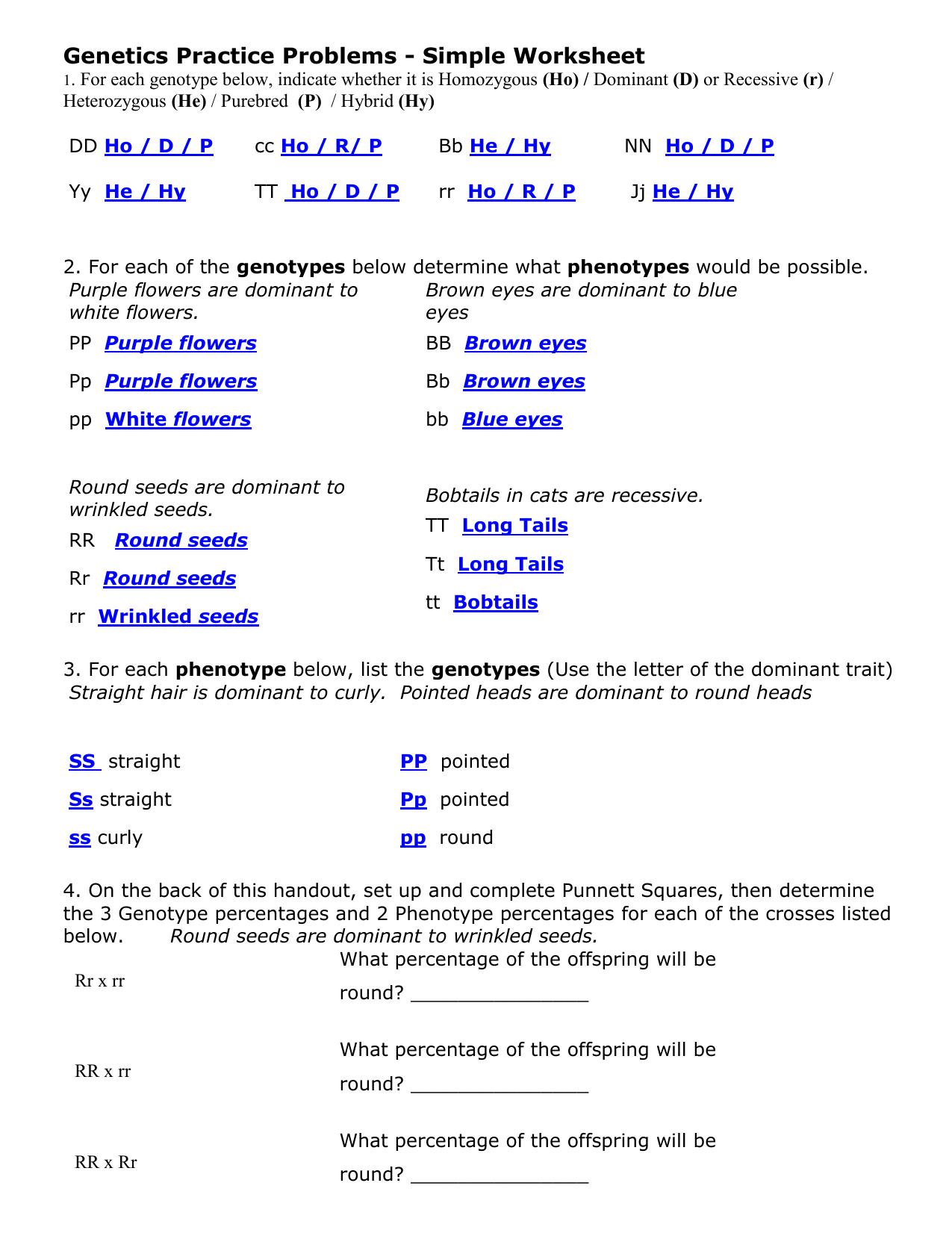 Genetics Practice Problems Simple Worksheet