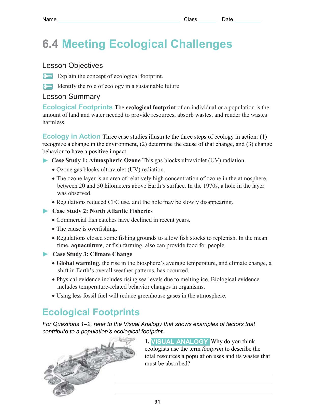 Ecology Worksheet Answer Key - Nidecmege