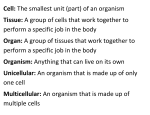 Important Cell Vocabulary Definitions
