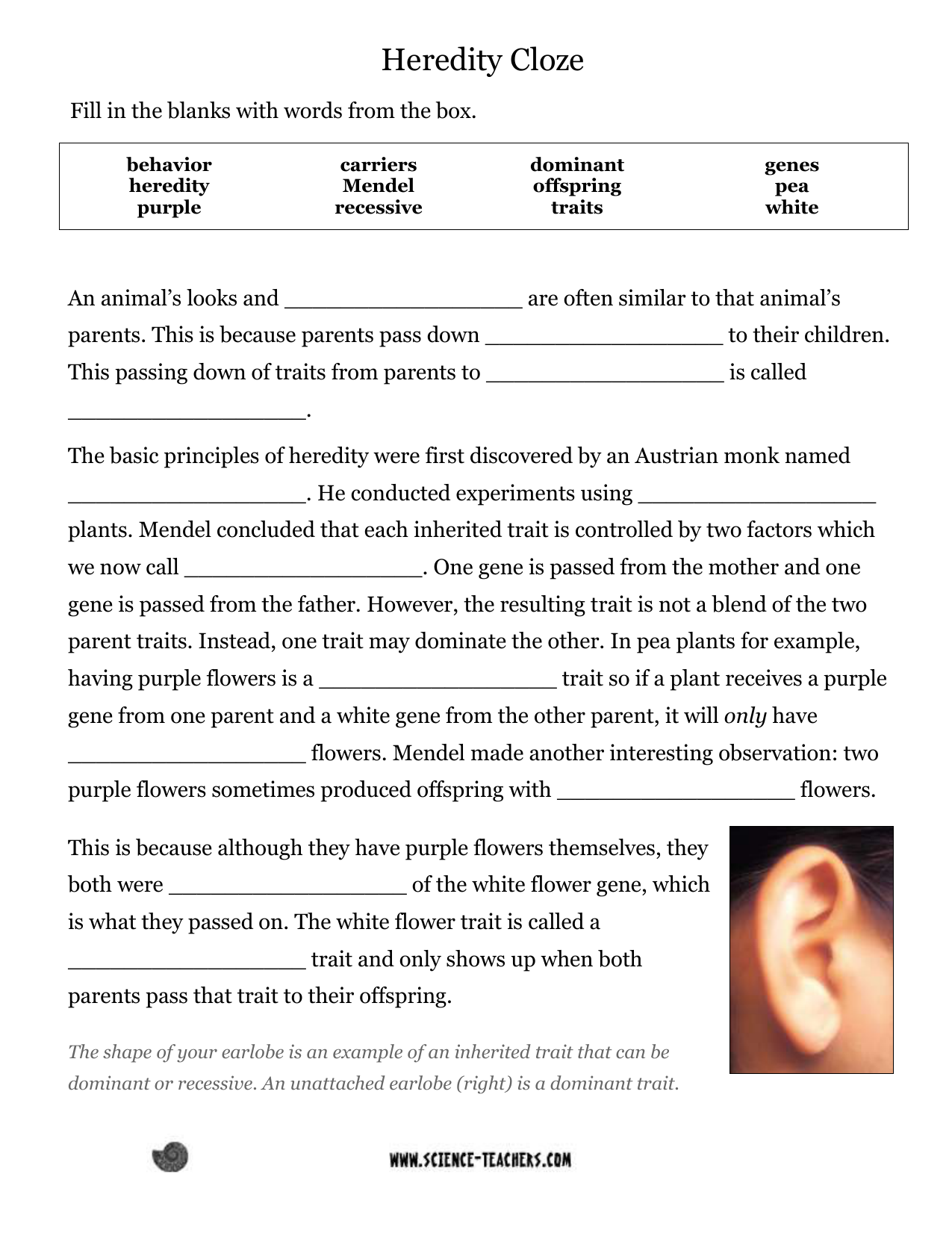 Heredity Cloze - Science on animal challenges worksheets, animal actions worksheets, animal life cycle worksheets, animal activities worksheets, animal health worksheets, animal cells worksheets, days of the week worksheets, similarities and differences worksheets, animal research worksheets, addition & subtraction worksheets, animals vertebrates and invertebrates worksheets, animal family worksheets, identifying emotions worksheets, first grade animal classification worksheets, animal name worksheets, animal color worksheets, simple fractions worksheets, animal behavior worksheets, animal species worksheets, animal worksheets for 1st grade,