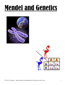 Mendel and Genetics Intro – Period 2 CP Biology