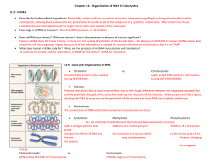 Chapter 11: Organization of DNA in Eukaryotes 11.2: mtDNA
