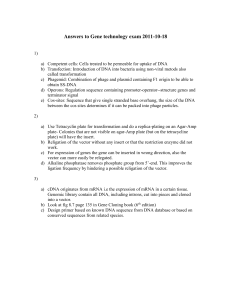 Answers to Gene technology exam 2011-10-18