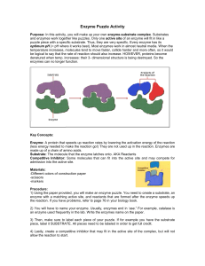 Enzyme Puzzle Activity