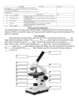 Microscope assessment