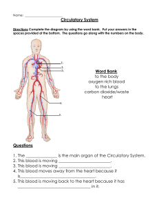 Cardiovascular system review sheet