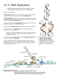 DNA Replication - The Biology Corner
