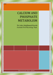 CALCIUM AND PHOSPHATE METABOLISM