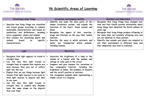 Year 6 Science Curriculum