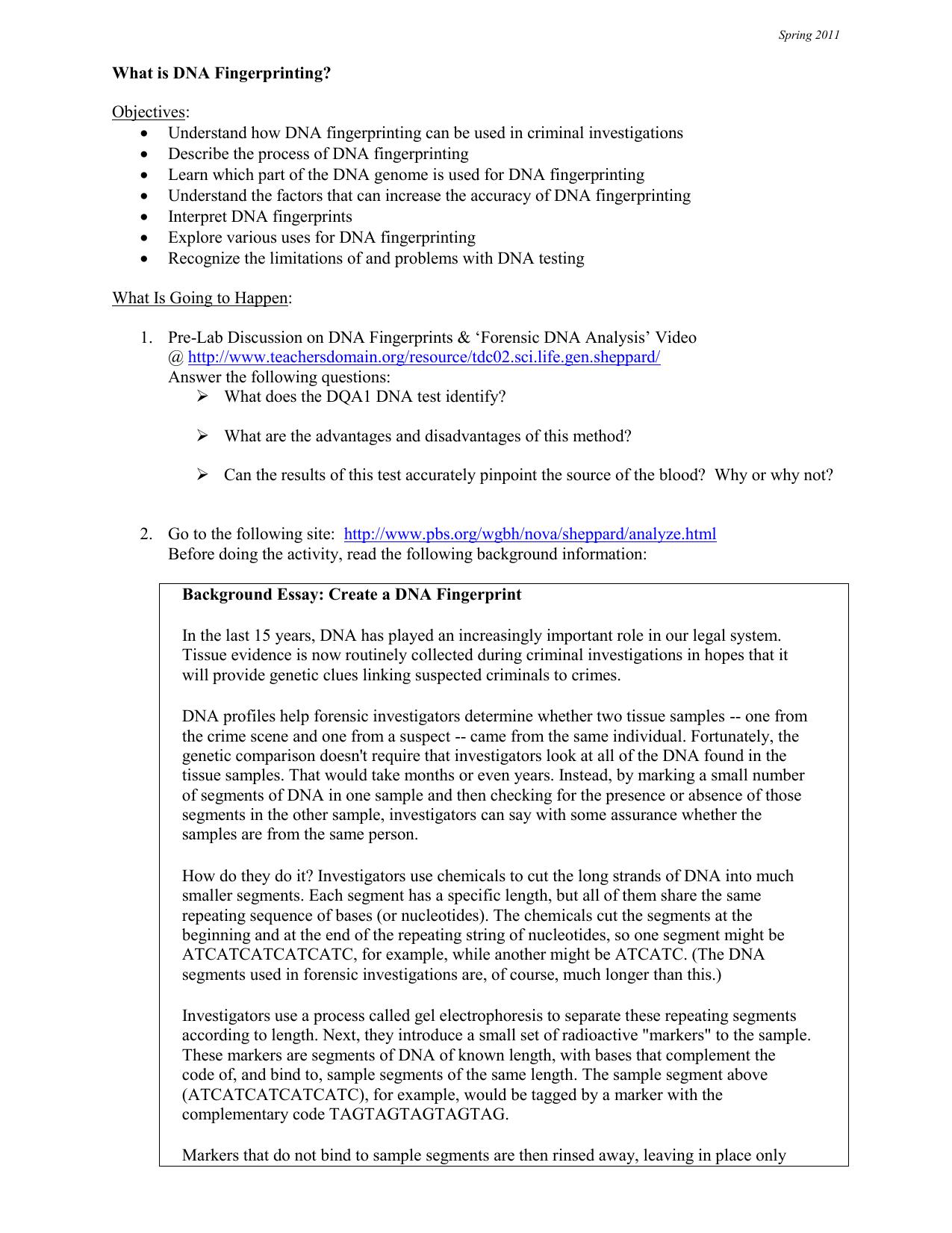 Gel Electrophoresis And Dna Fingerprinting Lab Worksheet ...