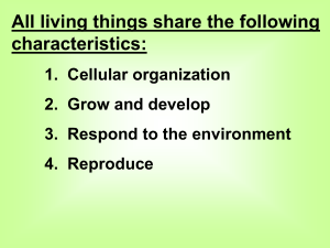 Class Notes: Characteristics of Life