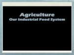 CORPORATE FARMING encompasses the production of animal and