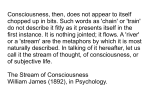 Consciousness, then, does not appear to itself chopped up in bits