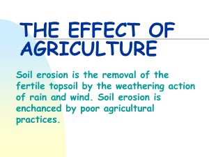 THE EFFECT OF AGRICULTURE