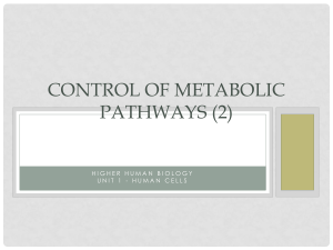 Control of Metabolic Pathways (2)