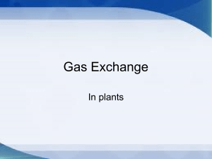 Gas Exchange - Hope Christian College Parent and Student Portal
