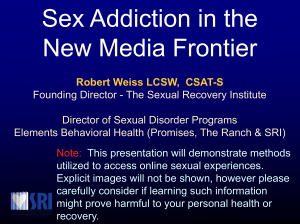 Sex Addiction in the New Media Frontier