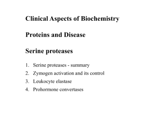 serine proteases