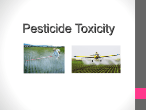 Insecticides: Cholinesterase Inhibitors