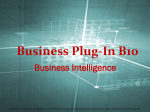 Business Plug-In B10 PowerPoint Presentation