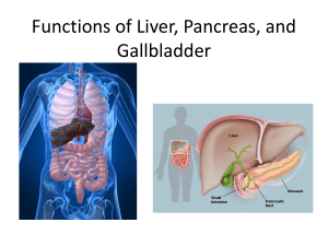 Functions of Liver, Pancreas, and Gallbladder