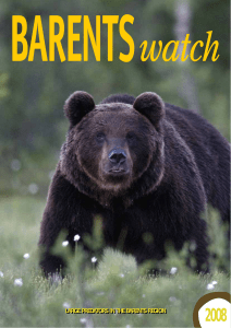 LARGE PREDATORS IN THE BARENTS REGION LARGE