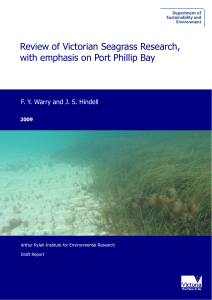 Seagrass Literature Review - Department of Environment, Land