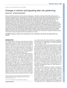 Changes in retinoic acid signaling alter otic patterning