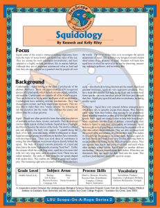 Squidology for Pdfing - Louisiana Marine Education Resources